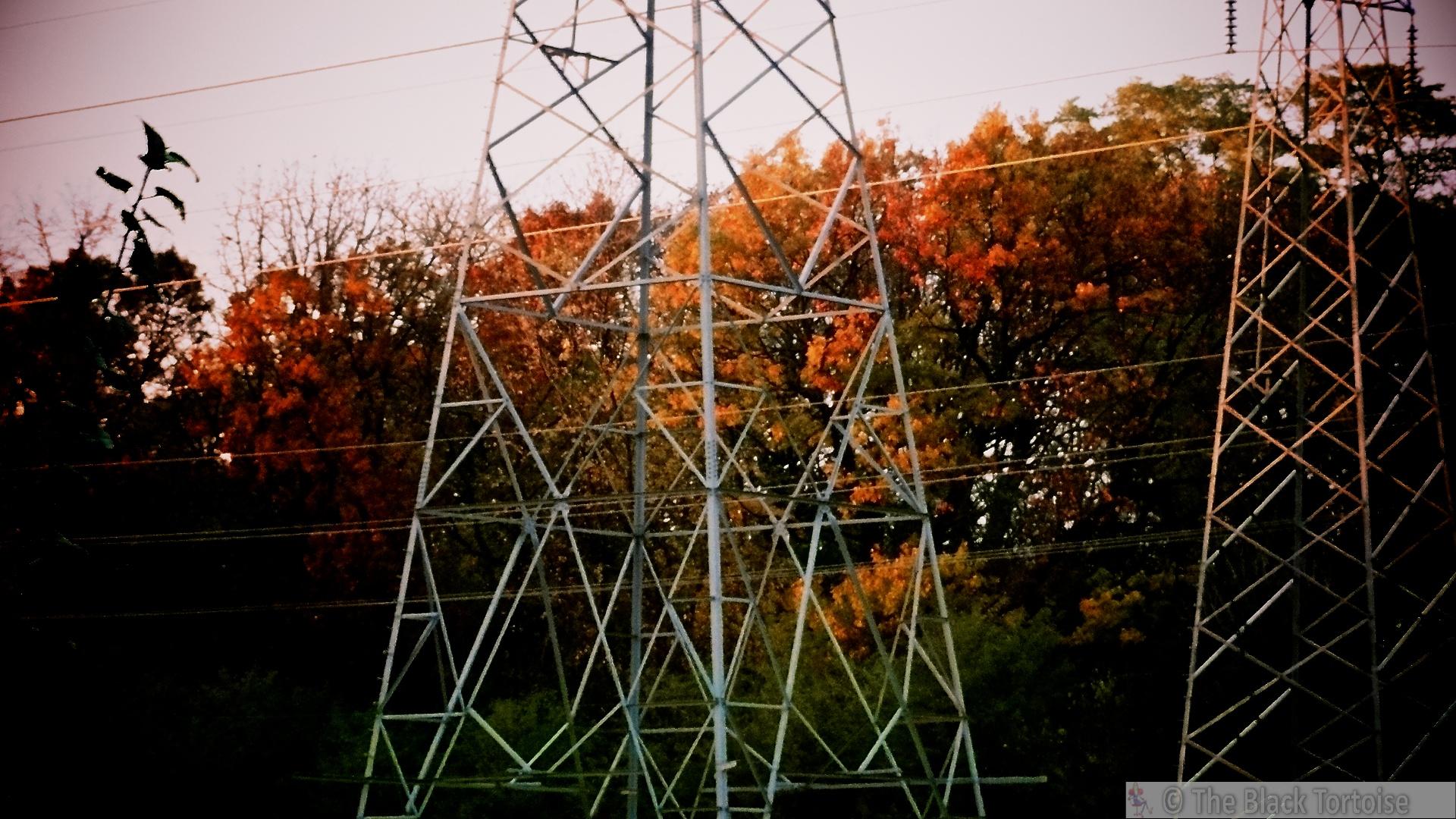 sunlight on wire3