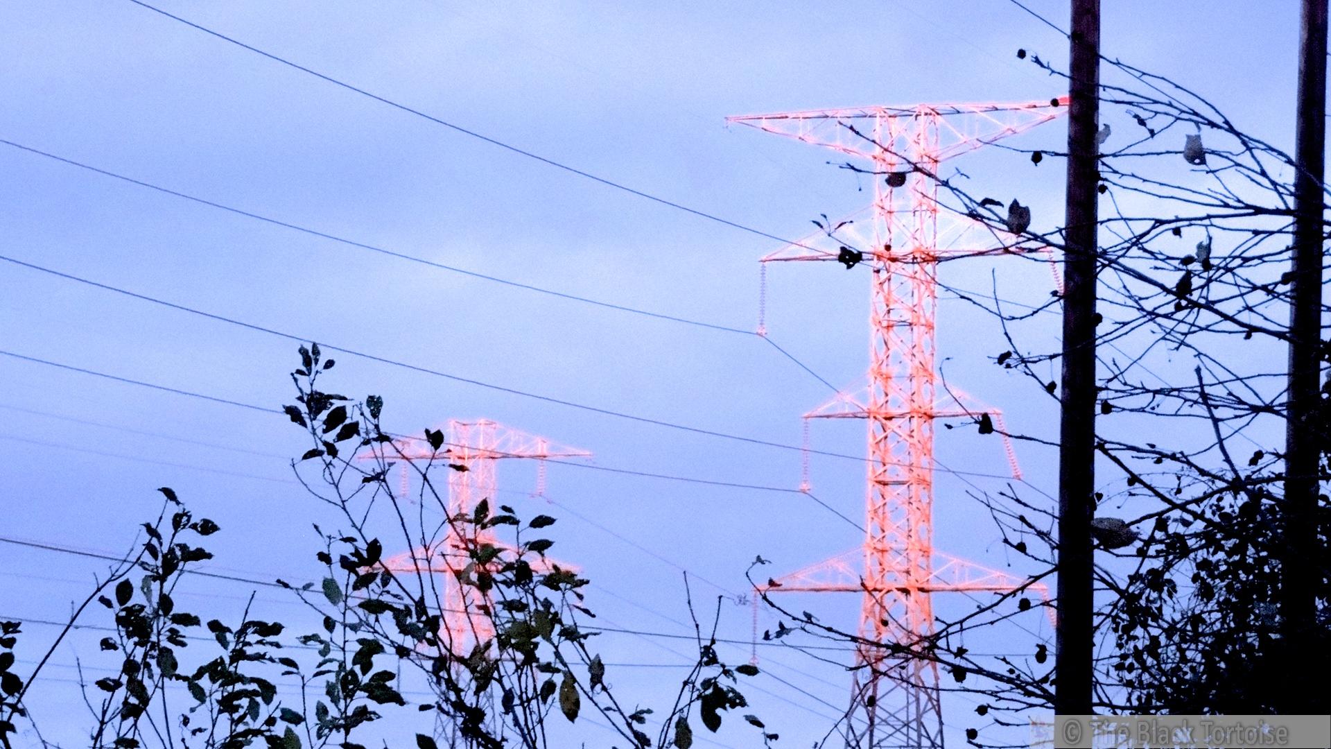 sunlight on wire2